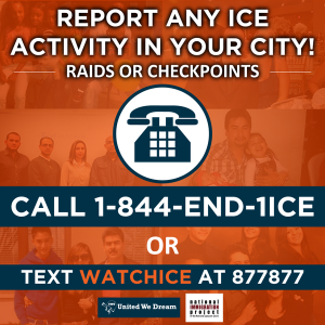 Report ICE Activity_ENG